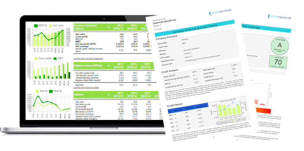 The Credit Risk Report Platform, which include the Credit Rating, Credit Limit, Bankruptcy Risk, Financial Information and much more for companies based in Denmark